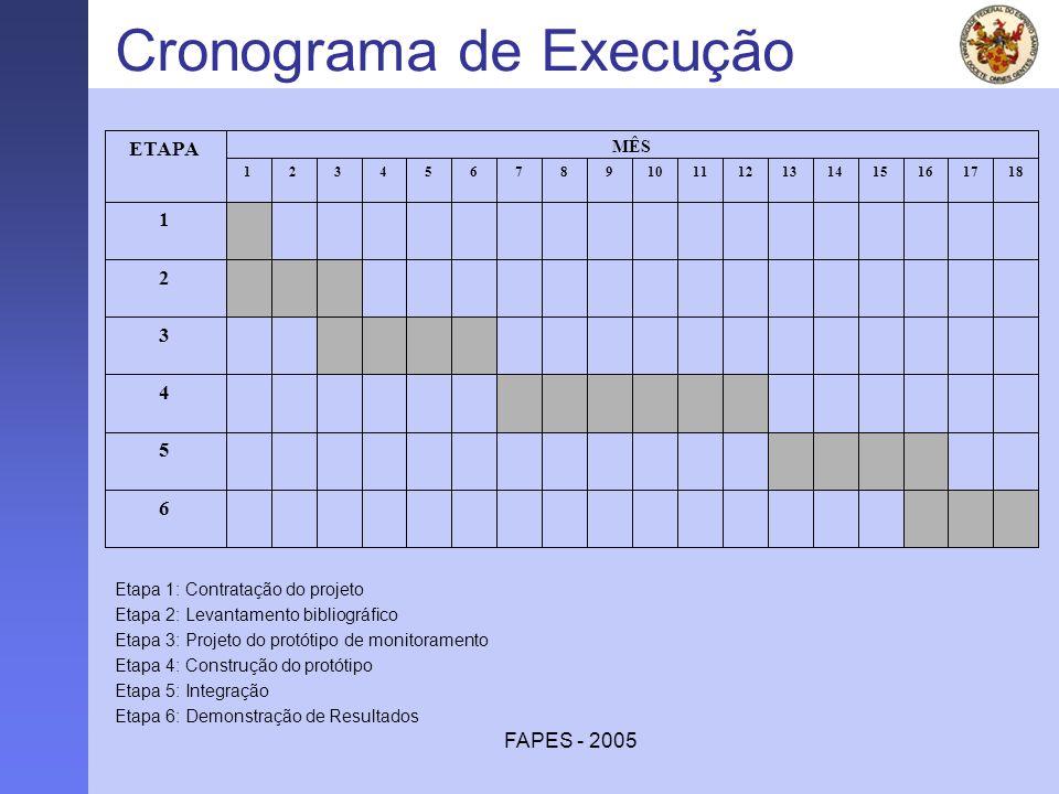 FAPES - 2005 Cronograma de Execução 6 5 4 3 2 1 181716151413121110987654321 MÊS ETAPA Etapa 1: Contratação do projeto Etapa 2: Levantamento bibliográf
