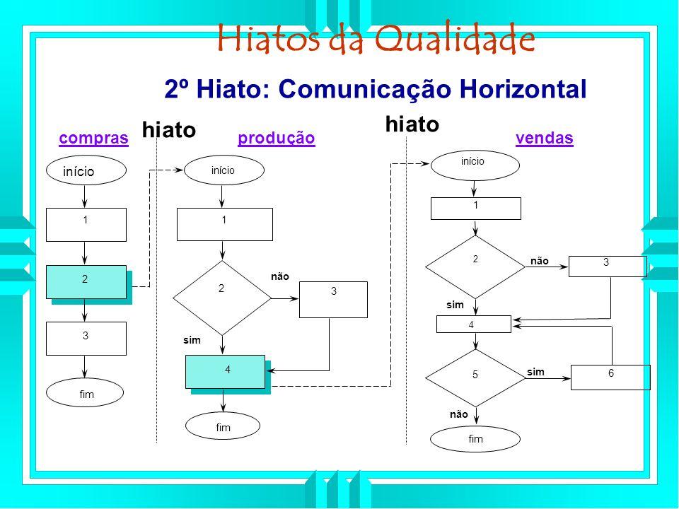 2º Hiato: Comunicação Horizontal início fim 1 2 3 início 1 2 4 3 fim início 1 2 3 4 5 6 fim não sim não sim comprasproduçãovendas hiato Hiatos da Qualidade