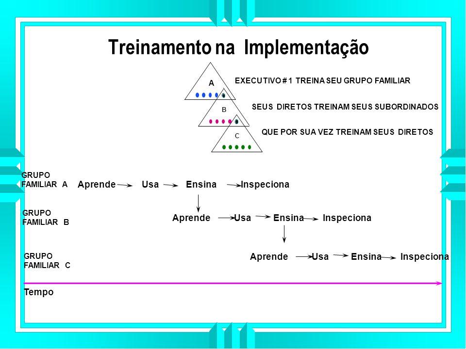 Treinamento na Implementação A EXECUTIVO # 1 TREINA SEU GRUPO FAMILIAR SEUS DIRETOS TREINAM SEUS SUBORDINADOS B C QUE POR SUA VEZ TREINAM SEUS DIRETOS GRUPO FAMILIAR A GRUPO FAMILIAR B Tempo Aprende Usa Ensina Inspeciona GRUPO FAMILIAR C Aprende Usa Ensina Inspeciona