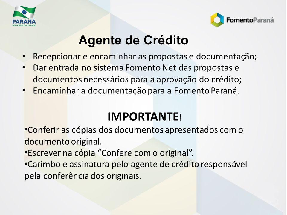 Agente de Crédito Recepcionar e encaminhar as propostas e documentação; Dar entrada no sistema Fomento Net das propostas e documentos necessários para
