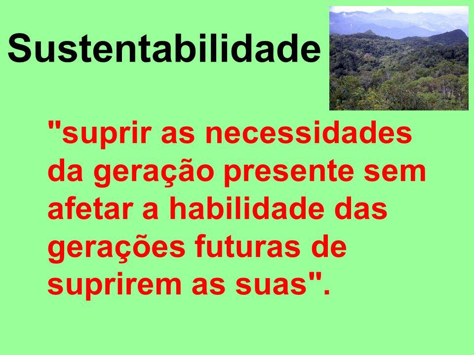 Surgiu, desta forma, o conceito de desenvolvimento sustentável, ou seja, o atendimento das necessidades do presente sem comprometer a possibilidade de as gerações futuras atenderem as suas próprias necessidades (WCED, 1991).