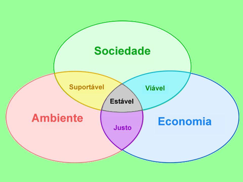 As necessidades humanas são determinadas social e culturalmente, isto requer a promoção de valores que mantenham os padrões de consumo dentro dos limites das possibilidades ecológicas.