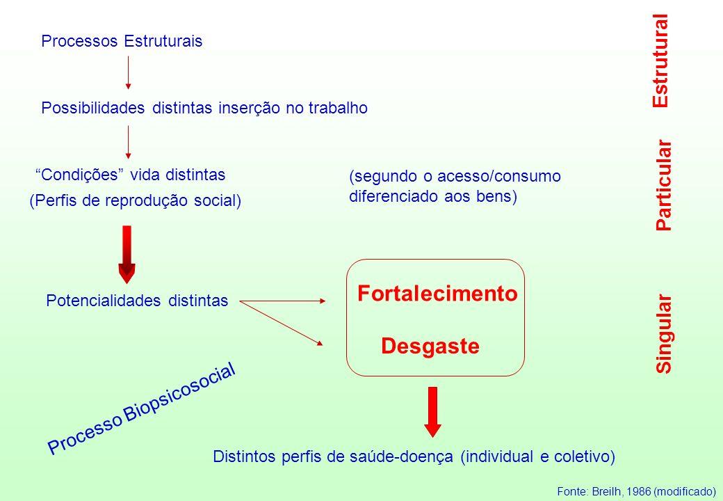 Processos Estruturais Possibilidades distintas inserção no trabalho Condições vida distintas (segundo o acesso/consumo diferenciado aos bens) (Perfis