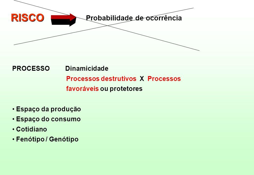 PROCESSO Dinamicidade Processos destrutivos X Processos favoráveis ou protetores Espaço da produção Espaço do consumo Cotidiano Fenótipo / Genótipo RI