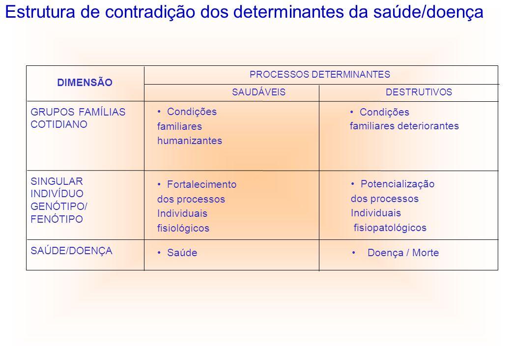 DIMENSÃO PROCESSOS DETERMINANTES SAUDÁVEISDESTRUTIVOS GRUPOS FAMÍLIAS COTIDIANO Condições familiares humanizantes Condições familiares deteriorantes S