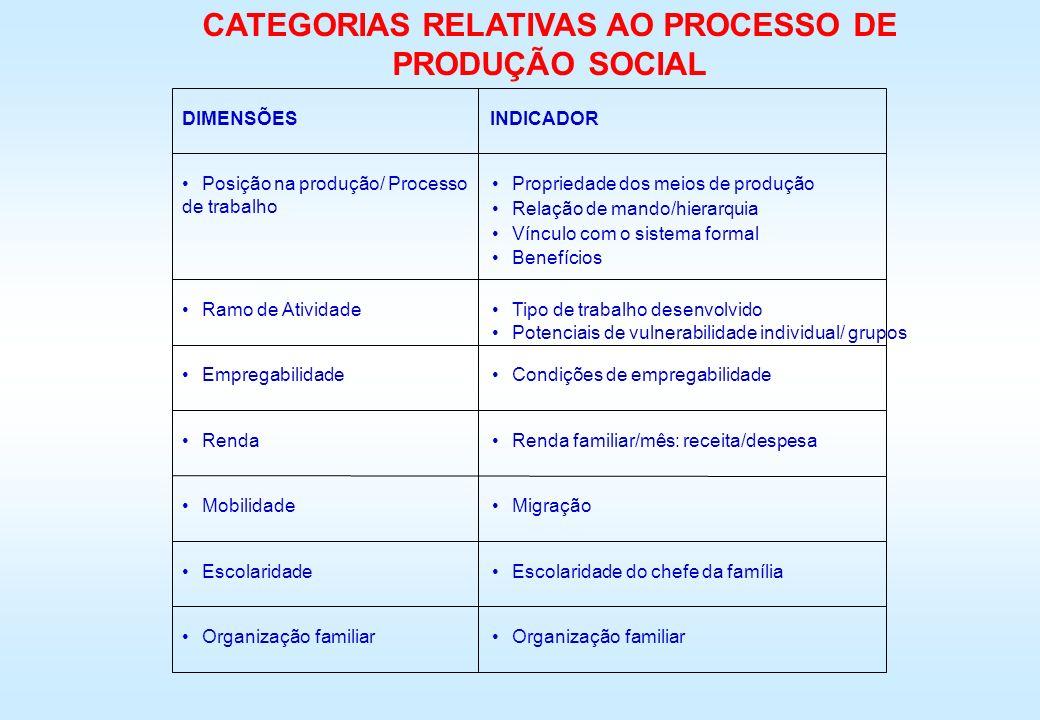 DIMENSÕESINDICADOR Posição na produção/ Processo de trabalho Ramo de Atividade Empregabilidade Renda Mobilidade Escolaridade Organização familiar Prop