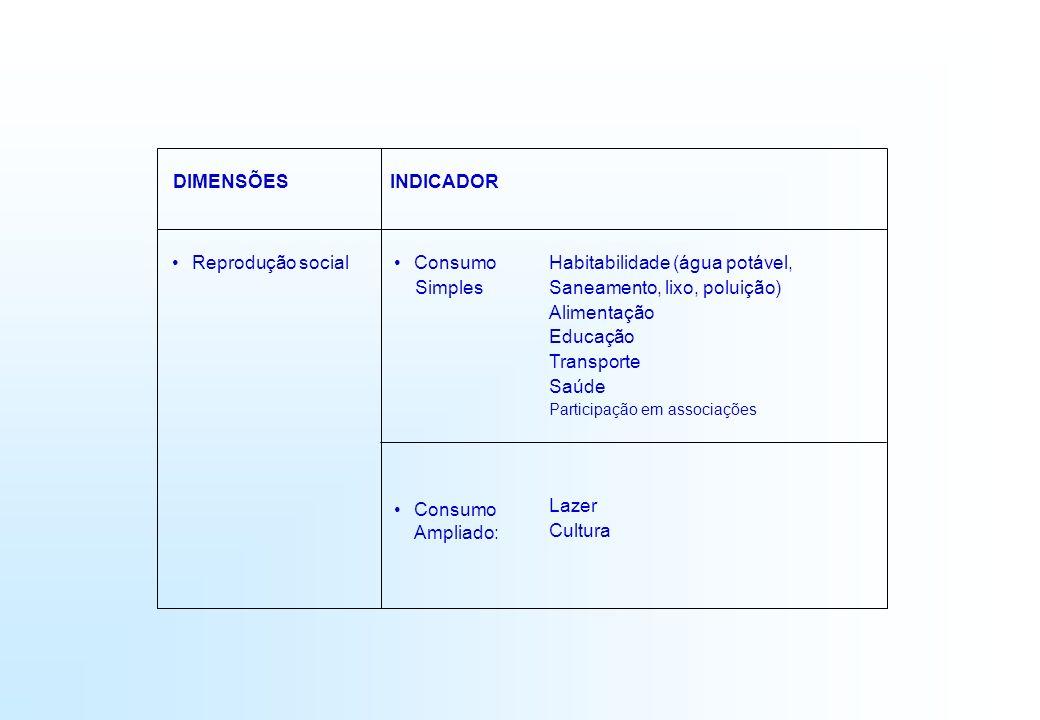 DIMENSÕESINDICADOR Reprodução social Consumo Simples Consumo Ampliado: Habitabilidade (água potável, Saneamento, lixo, poluição) Alimentação Educação