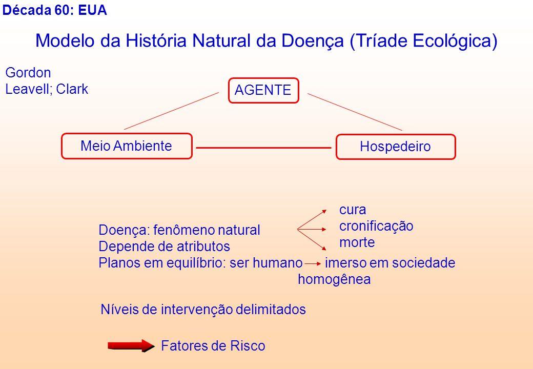 Década 60: EUA Modelo da História Natural da Doença (Tríade Ecológica) AGENTE Hospedeiro Meio Ambiente Gordon Leavell; Clark Doença: fenômeno natural