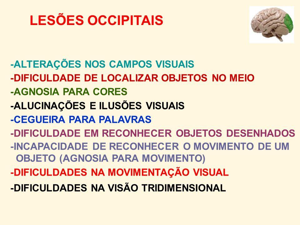-ALTERAÇÕES NOS CAMPOS VISUAIS -DIFICULDADE DE LOCALIZAR OBJETOS NO MEIO -AGNOSIA PARA CORES -ALUCINAÇÕES E ILUSÕES VISUAIS -CEGUEIRA PARA PALAVRAS -DIFICULDADE EM RECONHECER OBJETOS DESENHADOS -INCAPACIDADE DE RECONHECER O MOVIMENTO DE UM OBJETO (AGNOSIA PARA MOVIMENTO) -DIFICULDADES NA MOVIMENTAÇÃO VISUAL -DIFICULDADES NA VISÃO TRIDIMENSIONAL LESÕES OCCIPITAIS