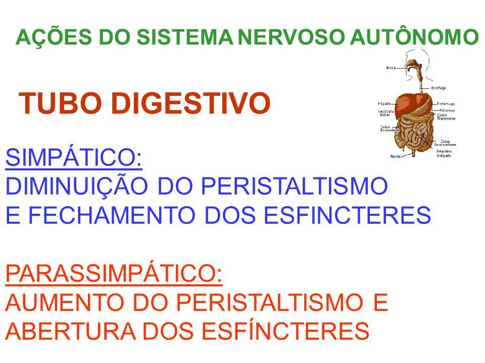 AÇÕES DO SISTEMA NERVOSO AUTÔNOMO SIMPÁTICO: DIMINUIÇÃO DO PERISTALTISMO E FECHAMENTO DOS ESFINCTERES PARASSIMPÁTICO: AUMENTO DO PERISTALTISMO E ABERT