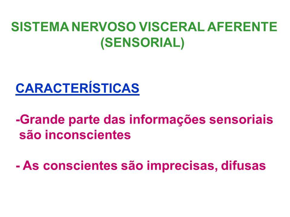 SISTEMA NERVOSO VISCERAL AFERENTE (SENSORIAL) CARACTERÍSTICAS -Grande parte das informações sensoriais são inconscientes - As conscientes são imprecis