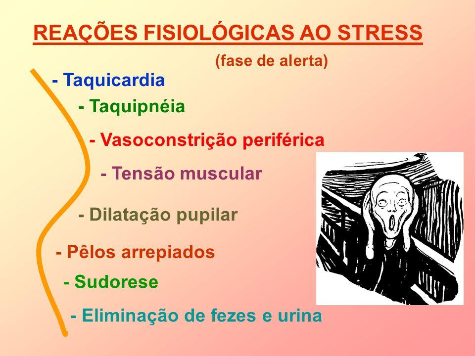 REAÇÕES FISIOLÓGICAS AO STRESS - Taquicardia - Taquipnéia - Vasoconstrição periférica - Tensão muscular - Dilatação pupilar - Pêlos arrepiados - Sudor