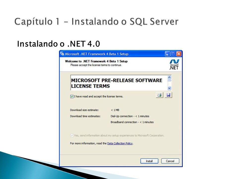 Instalando o.NET 4.0