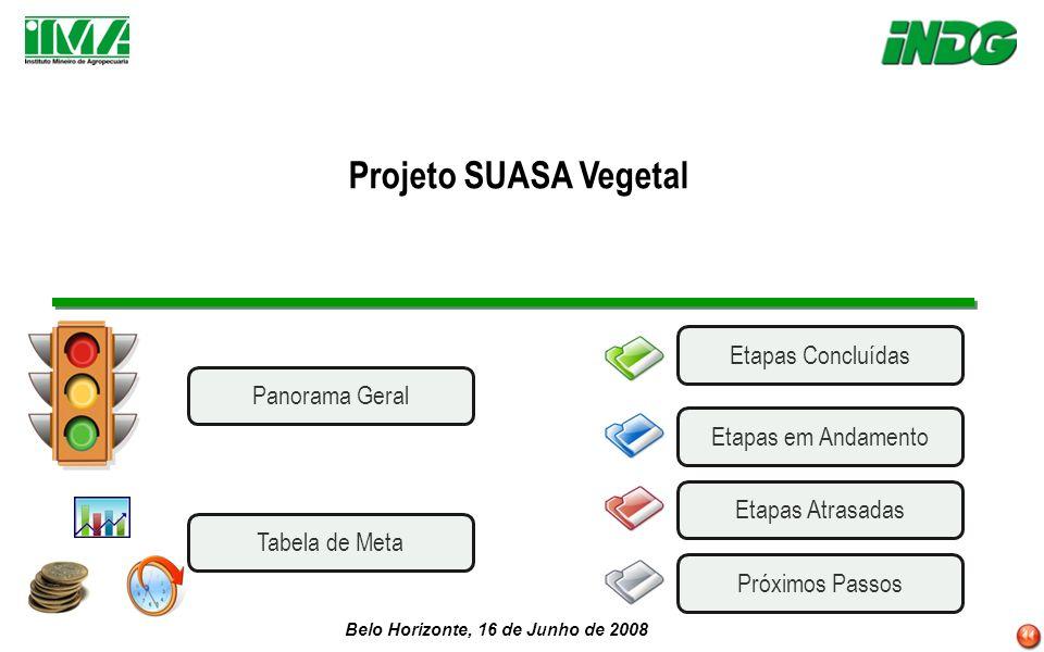 Belo Horizonte, 16 de Junho de 2008 Projeto SUASA Vegetal Etapas AtrasadasEtapas em AndamentoPróximos Passos Etapas Concluídas Panorama Geral Tabela d