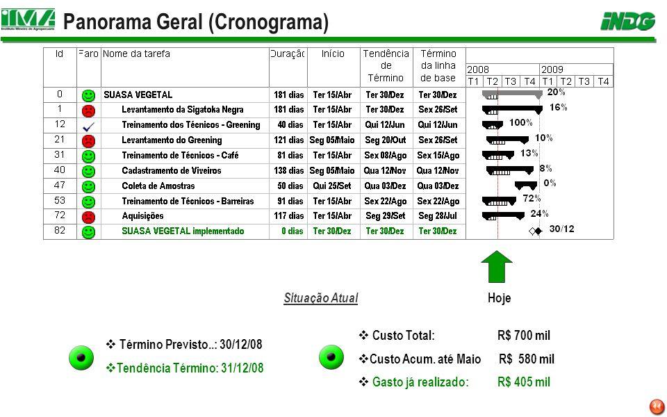 Panorama Geral (Cronograma) Hoje Situação Atual Término Previsto..: 30/12/08 Tendência Término: 31/12/08 Custo Total: R$ 700 mil Custo Acum. até Maio