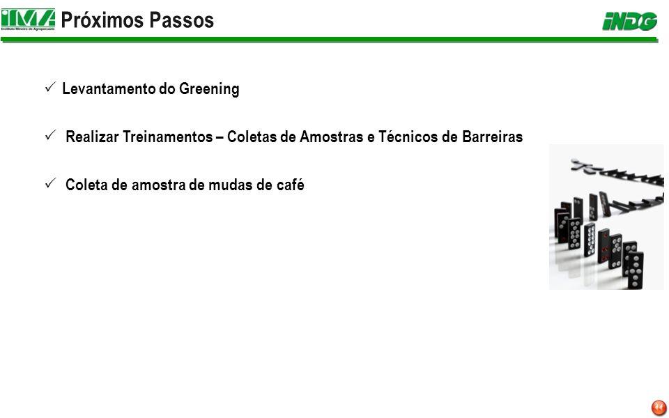 Próximos Passos Levantamento do Greening Realizar Treinamentos – Coletas de Amostras e Técnicos de Barreiras Coleta de amostra de mudas de café