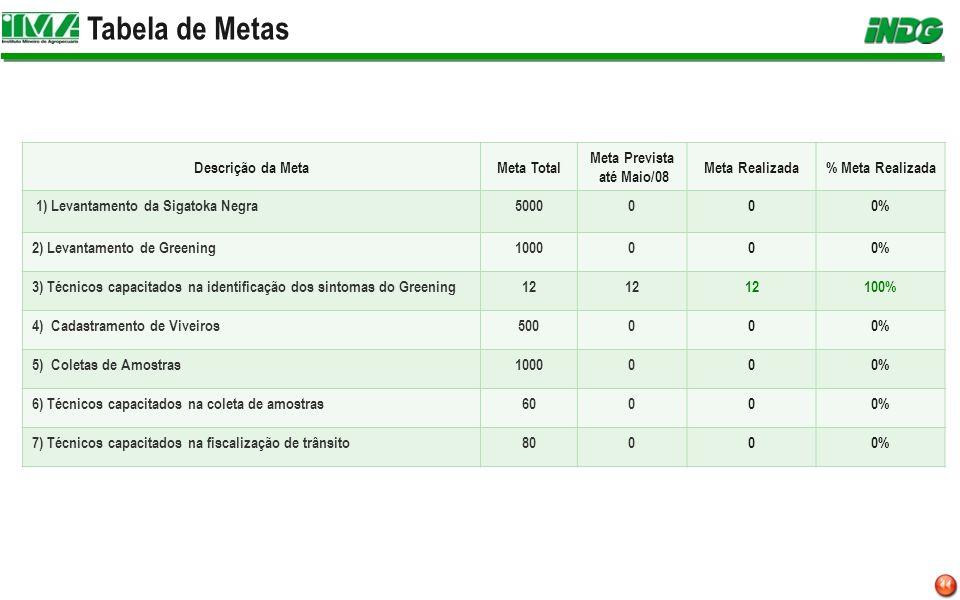 Tabela de Metas Descrição da MetaMeta Total Meta Prevista até Maio/08 Meta Realizada% Meta Realizada 1) Levantamento da Sigatoka Negra5000000% 2) Leva