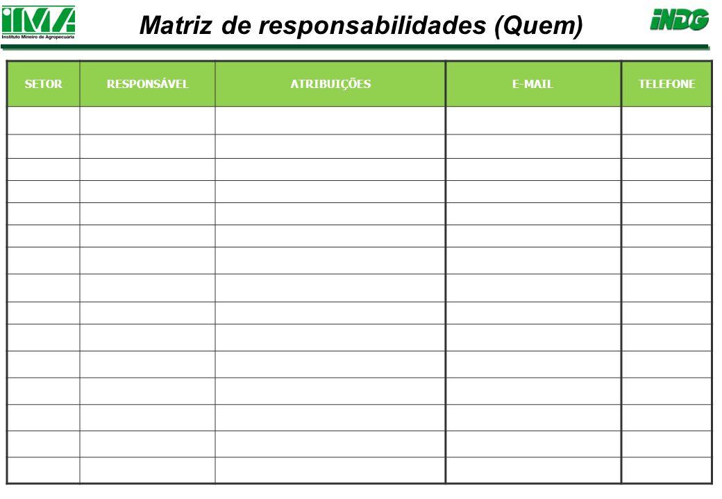 SETORRESPONSÁVELATRIBUIÇÕESE-MAILTELEFONE Matriz de responsabilidades (Quem)