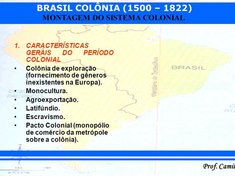 BRASIL COLÔNIA (1500 – 1822) Prof. Camilo MONTAGEM DO SISTEMA COLONIAL 1.CARACTERÍSTICAS GERAIS DO PERÍODO COLONIAL Colônia de exploração (forneciment