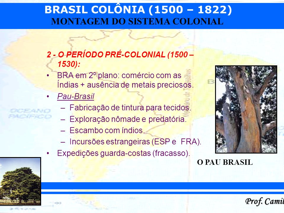 BRASIL COLÔNIA (1500 – 1822) Prof. Camilo MONTAGEM DO SISTEMA COLONIAL 2 - O PERÍODO PRÉ-COLONIAL (1500 – 1530): BRA em 2º plano: comércio com as Índi