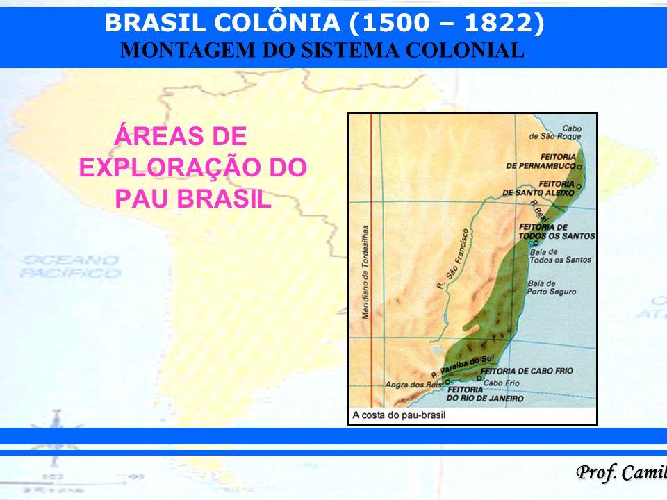 BRASIL COLÔNIA (1500 – 1822) Prof. Camilo MONTAGEM DO SISTEMA COLONIAL ÁREAS DE EXPLORAÇÃO DO PAU BRASIL