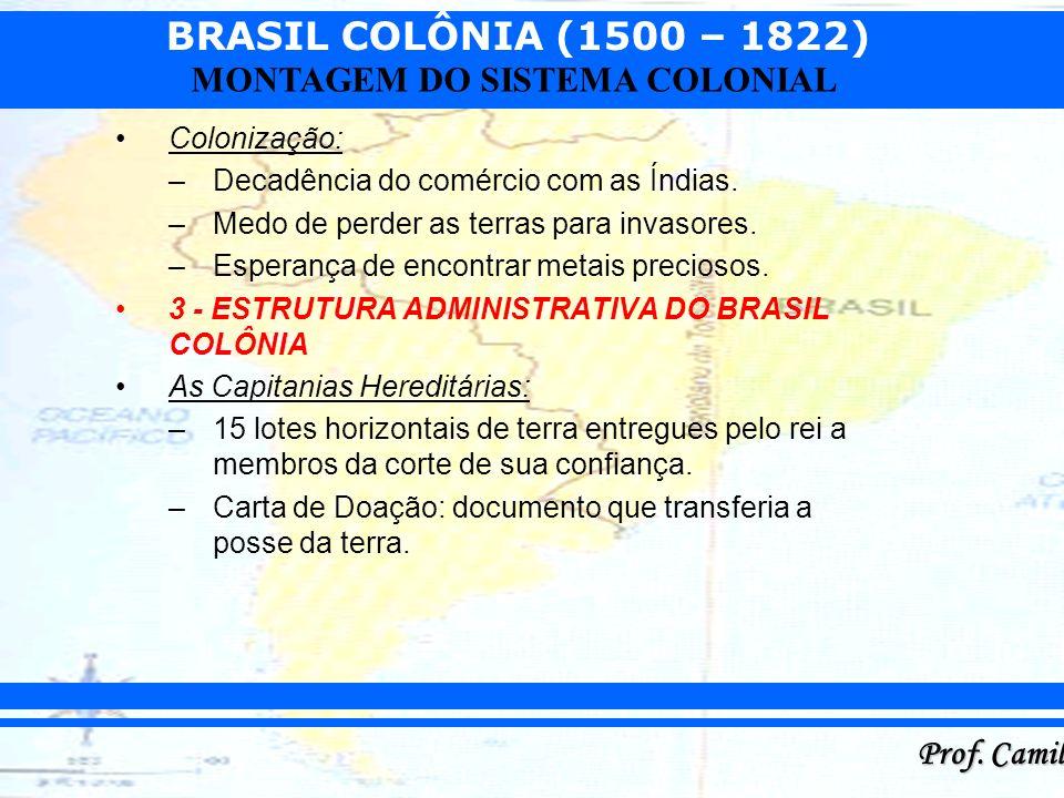 BRASIL COLÔNIA (1500 – 1822) Prof. Camilo MONTAGEM DO SISTEMA COLONIAL Colonização: –Decadência do comércio com as Índias. –Medo de perder as terras p