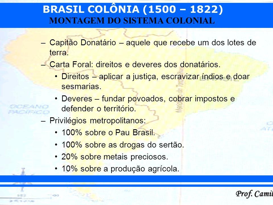 BRASIL COLÔNIA (1500 – 1822) Prof. Camilo MONTAGEM DO SISTEMA COLONIAL –Capitão Donatário – aquele que recebe um dos lotes de terra. –Carta Foral: dir