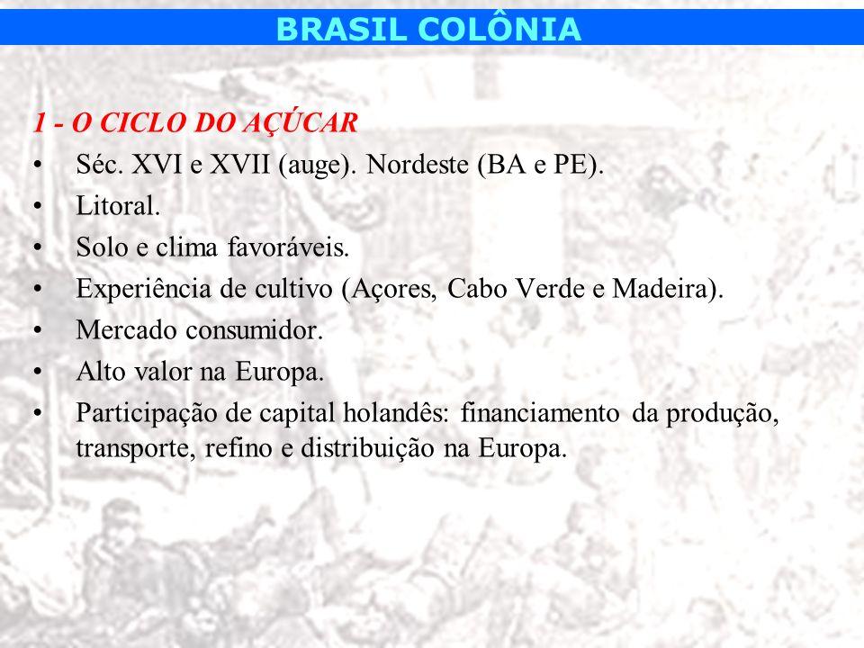 BRASIL COLÔNIA 1 - O CICLO DO AÇÚCAR Séc. XVI e XVII (auge). Nordeste (BA e PE). Litoral. Solo e clima favoráveis. Experiência de cultivo (Açores, Cab
