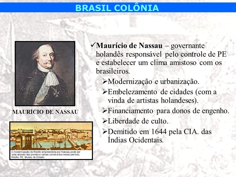 BRASIL COLÔNIA Maurício de Nassau – governante holandês responsável pelo controle de PE e estabelecer um clima amistoso com os brasileiros. Modernizaç