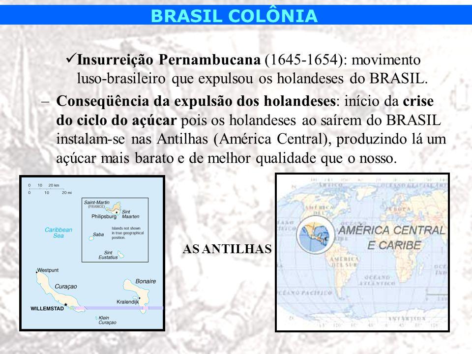 BRASIL COLÔNIA Insurreição Pernambucana (1645-1654): movimento luso-brasileiro que expulsou os holandeses do BRASIL. –Conseqüência da expulsão dos hol
