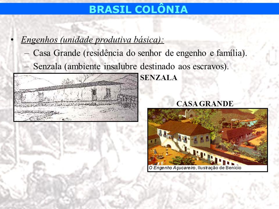 BRASIL COLÔNIA Engenhos (unidade produtiva básica): –Casa Grande (residência do senhor de engenho e família). –Senzala (ambiente insalubre destinado a