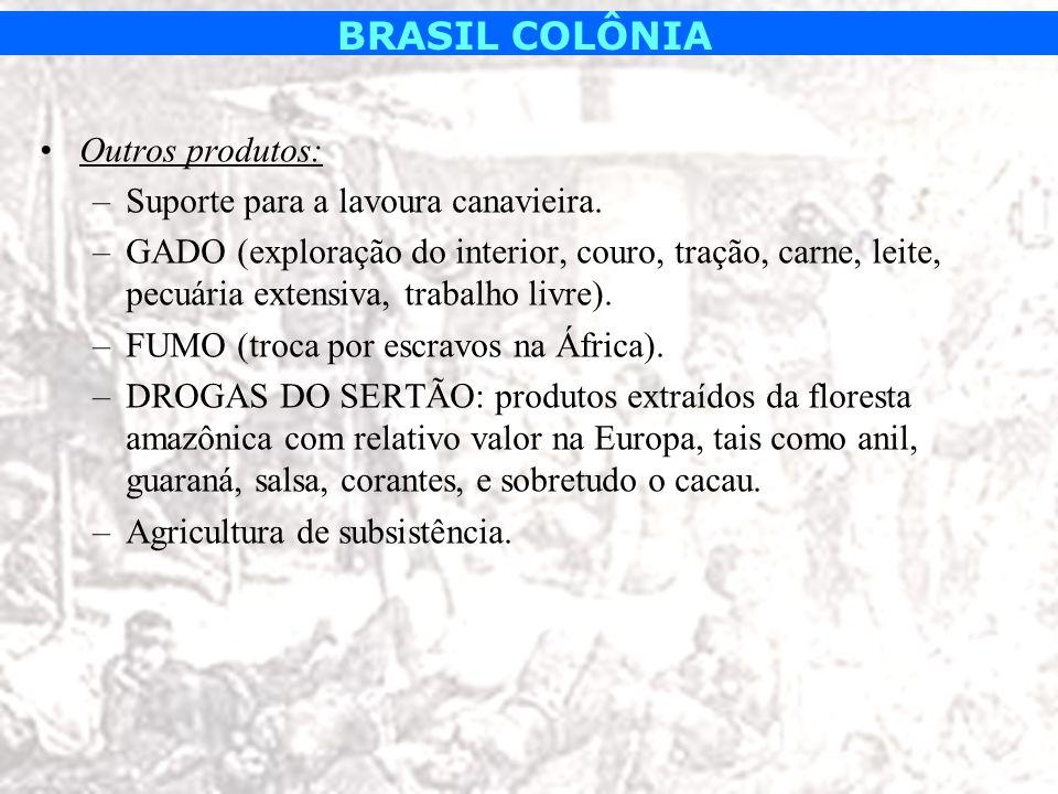 BRASIL COLÔNIA Outros produtos: –Suporte para a lavoura canavieira. –GADO (exploração do interior, couro, tração, carne, leite, pecuária extensiva, tr