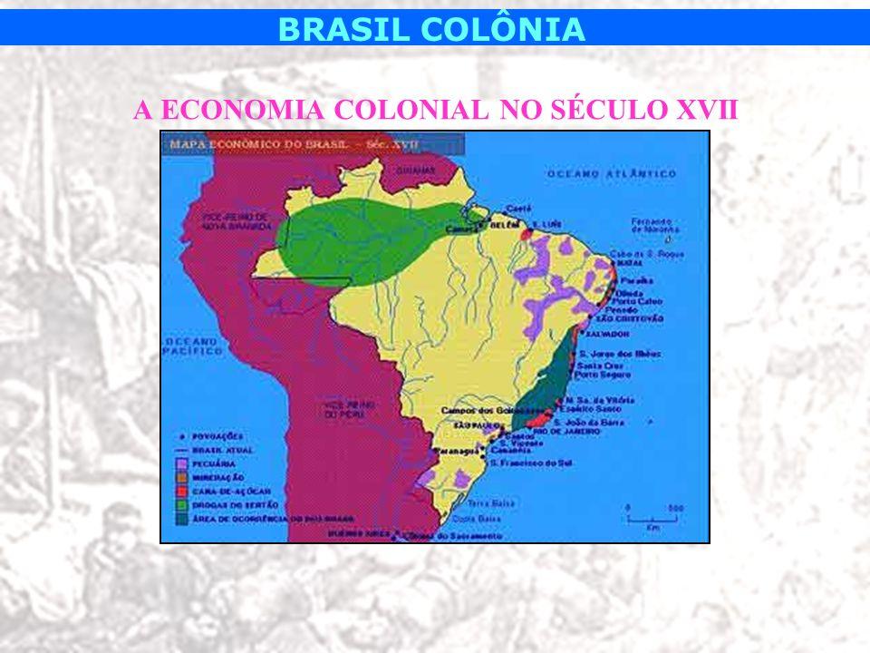 BRASIL COLÔNIA Trabalho escravo: –ÍNDIOS: mais utilizados até aproximadamente 1560, utilizados em lavouras menos desenvolvidas ou mais pobres.