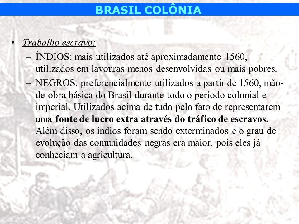 BRASIL COLÔNIA Trabalho escravo: –ÍNDIOS: mais utilizados até aproximadamente 1560, utilizados em lavouras menos desenvolvidas ou mais pobres. –NEGROS
