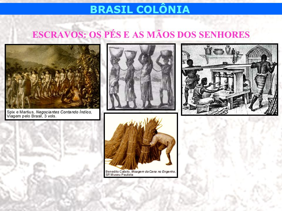 BRASIL COLÔNIA TRÁFICO DE ESCRAVOS: UM NEGÓCIO LUCRATIVO