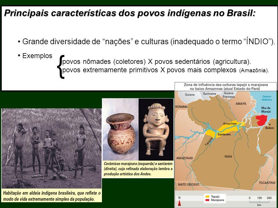Principais características dos povos indígenas no Brasil: Grande diversidade de nações e culturas (inadequado o termo ÍNDIO). Exemplos { povos nômades