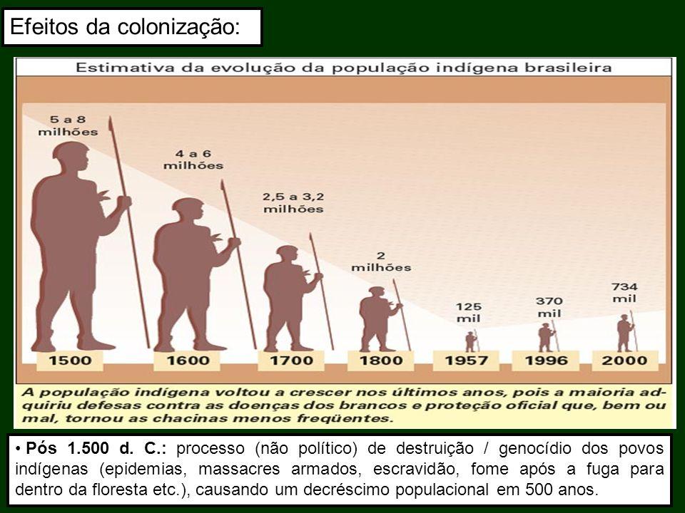 Pós 1.500 d. C.: processo (não político) de destruição / genocídio dos povos indígenas (epidemias, massacres armados, escravidão, fome após a fuga par