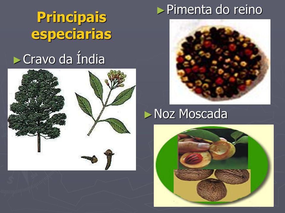 Principais especiarias Eram especiarias também: Eram especiarias também: o gengibre, o gengibre, a canela, a canela, o açúcar.