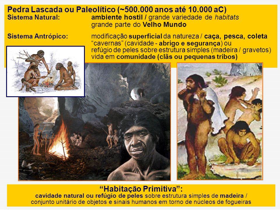 PRÉ-HISTÓRIA Hominídeos desde 15 milhões Australopithecus 5 mlhões anos Homo hábilis 2 milhões Homo erectus 1 milhão Homo sapiens 100 mil anos Olduvai