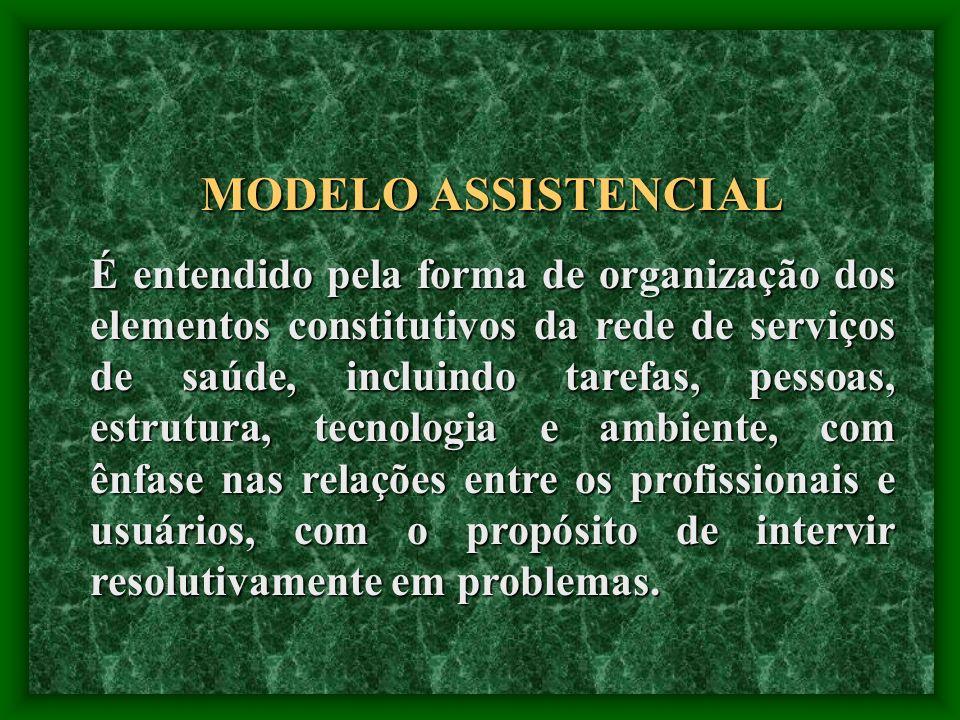HIERARQUIZAÇÃO DOS SERVIÇOS Modelo Proposto MACRORREGIÃO SATÉLITESATÉLITESATÉLITE SEDE DE MÓDULO MICRORREGIÃO