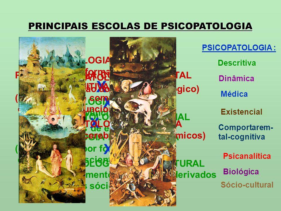 PRINCIPAIS ESCOLAS DE PSICOPATOLOGIA PSICOPATOLOGIA DESCRITIVA (forma) X PSICOPATOLOGIA DINÂMICA (vivência) PSICOPATOLOGIA MÉDICA (disfunção do aparel