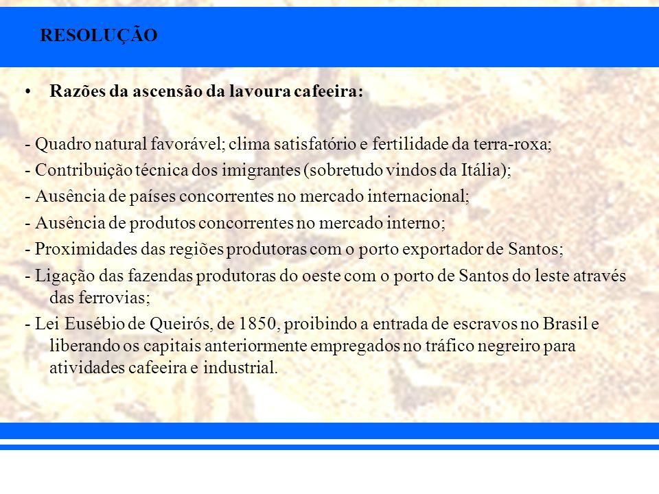 RESOLUÇÃO Razões da ascensão da lavoura cafeeira: - Quadro natural favorável; clima satisfatório e fertilidade da terra-roxa; - Contribuição técnica d