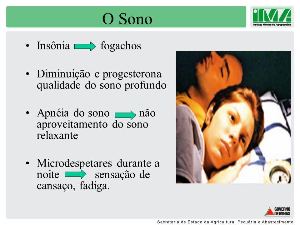 A depressão Comum a fase peri- menopausa (mesntruações irregulares) Variação hormonal = oscilações no humor Menopausa= envelhecimento Síndrome do Ninho Vazio