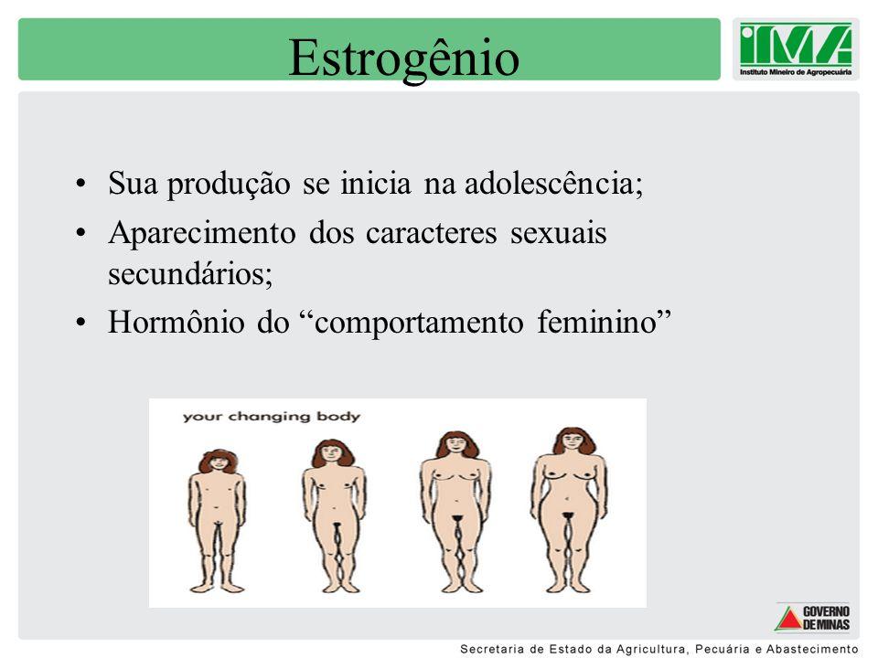 Progesterona Produzido durante a puberdade.Hormônio da gravidez e aleitamento.