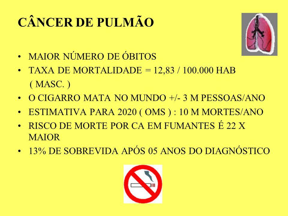 CÂNCER DE PULMÃO MAIOR NÚMERO DE ÓBITOS TAXA DE MORTALIDADE = 12,83 / 100.000 HAB ( MASC. ) O CIGARRO MATA NO MUNDO +/- 3 M PESSOAS/ANO ESTIMATIVA PAR