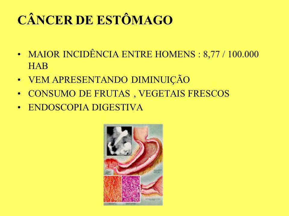 CÂNCER DE ESTÔMAGO MAIOR INCIDÊNCIA ENTRE HOMENS : 8,77 / 100.000 HAB VEM APRESENTANDO DIMINUIÇÃO CONSUMO DE FRUTAS, VEGETAIS FRESCOS ENDOSCOPIA DIGES
