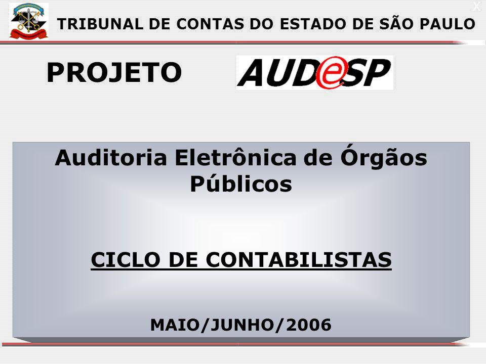 1 X TRIBUNAL DE CONTAS DO ESTADO DE SÃO PAULO PROJETO Auditoria Eletrônica de Órgãos Públicos CICLO DE CONTABILISTAS MAIO/JUNHO/2006