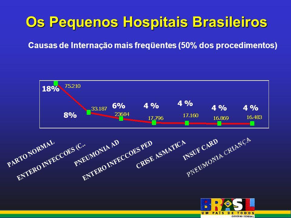 Os Pequenos Hospitais Brasileiros Causas de Internação mais freqüentes (50% dos procedimentos) 18% 6%4 % 8%
