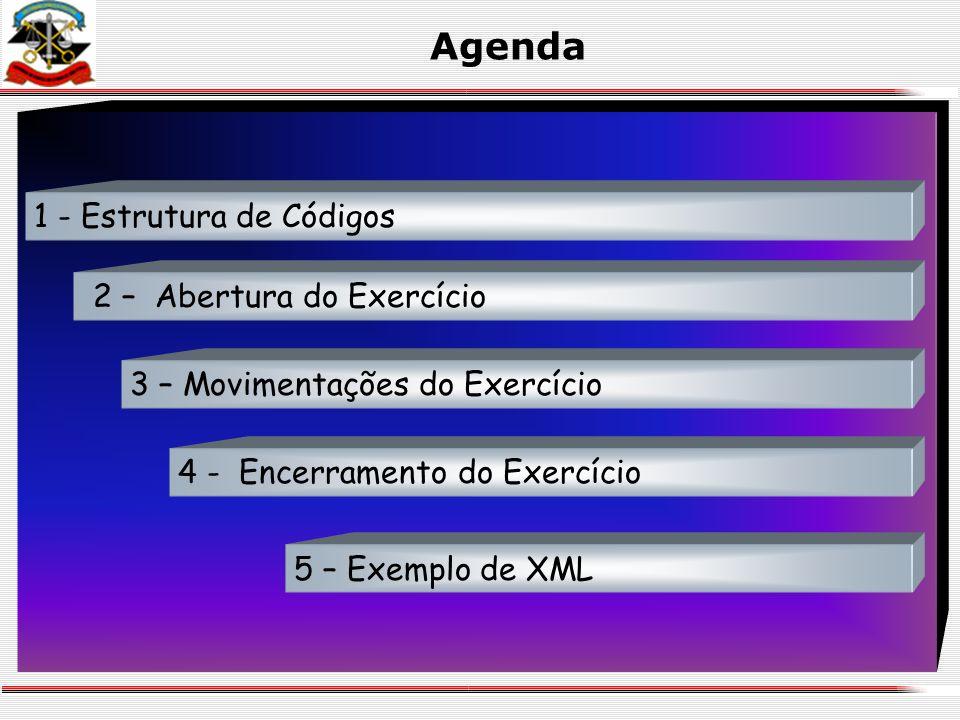 Agenda 2 – Abertura do Exercício 1 - Estrutura de Códigos 3 – Movimentações do Exercício 4 - Encerramento do Exercício 5 – Exemplo de XML