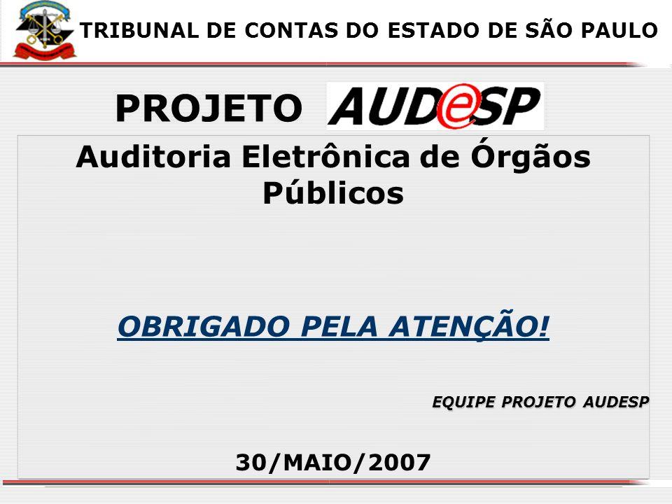 Auditoria Eletrônica de Órgãos Públicos 30/MAIO/2007 XX X X OBRIGADO PELA ATENÇÃO! TRIBUNAL DE CONTAS DO ESTADO DE SÃO PAULO PROJETO EQUIPE PROJETO AU